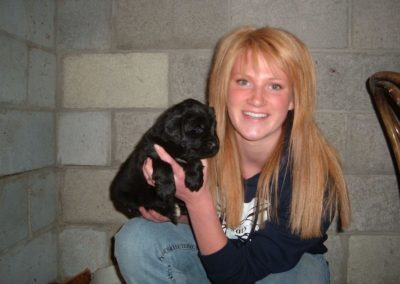 newfoundland-puppies-dogsDSCF3317