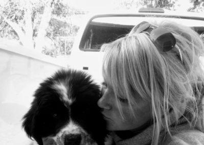 newfoundland-puppies-dogsDSCN4671 - Copy - Copy