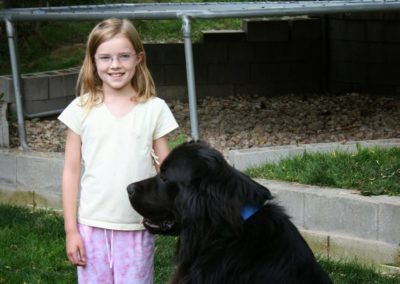 newfoundland-puppies-dogsIMG_0384