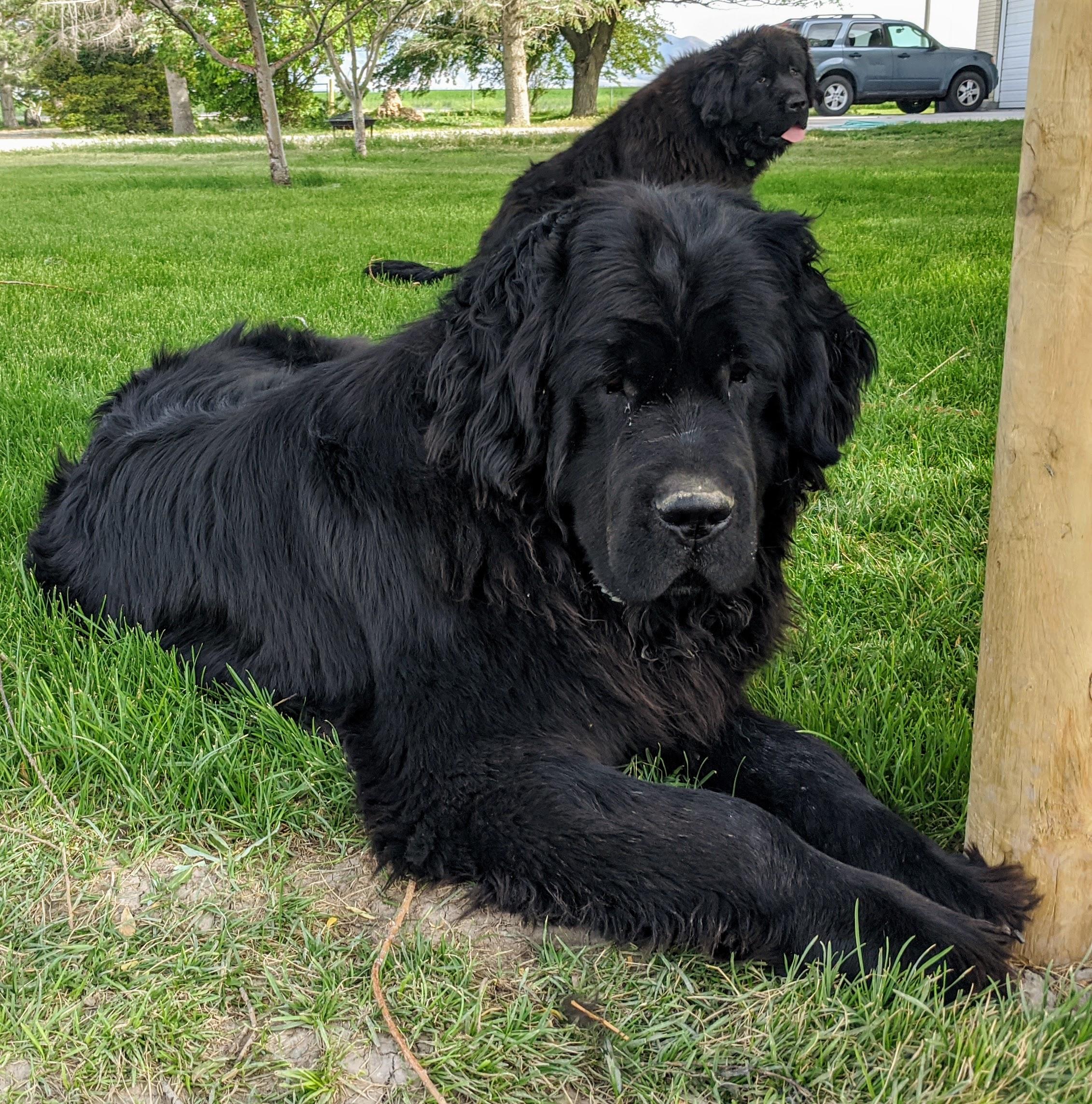 Winnie Profile Pic